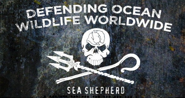 kunneke_whale_wars_sea_shepherd_eco1